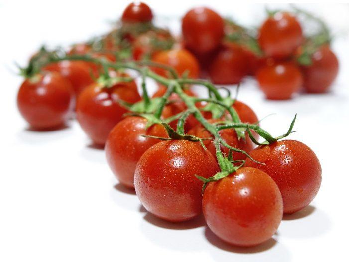 tomatoes-1540836_1920