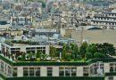 Ogród na dachu obniży wydatki na klimatyzację i ogrzewanie