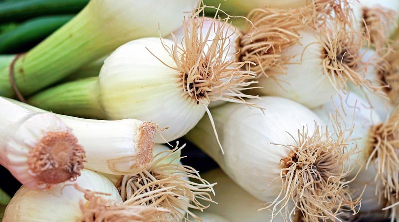 Rak jelita grubego nie lubi cebuli