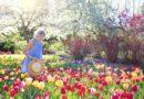"""Czy praca w ogrodzie może być doskonałym """"resetem"""" po pracy?"""