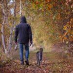 Nawet krótkie przerwy na spacer pomagają obniżyć ciśnienie krwi