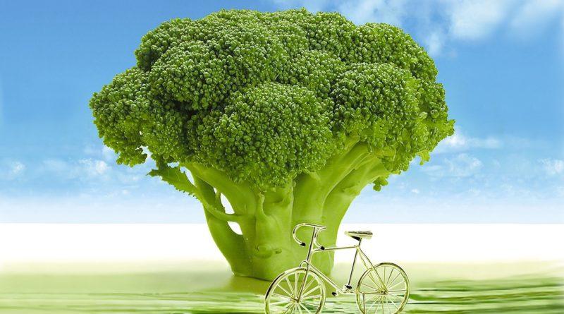 Składnik kiełków brokułów może pomóc schizofrenikom