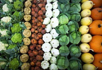 Warzywa mało znane i zapomniane